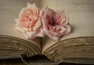 book-love-books-to-read-23017132-500-350